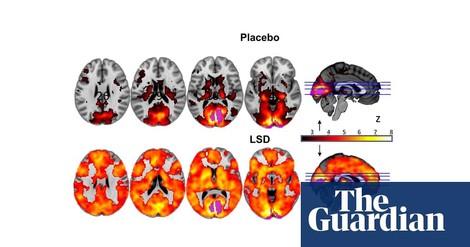 'Microdosing' mit LSD und Pilzen – neue Möglichkeiten des Drogenkonsums