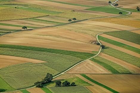 Ernährung - Landverbrauch - Emissionen im Jahr 2050: Die Quadratur des Kreises