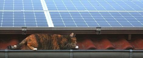 Mietstrom vom Dach: Die solare Revolution könnte so einfach sein