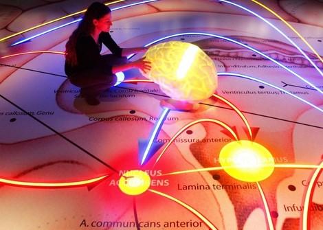 Gehirntraining-Apps: Schlauer dank Placebo-Effekt