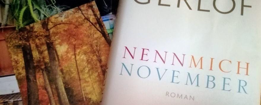"""Mein kleiner Buchladen: """"Frische Bücher"""" - Nenn mich November"""