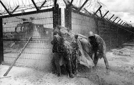 30 Jahre Wackersdorf: Die Pfingstschlacht um eine Wiederaufbereitungsanlage