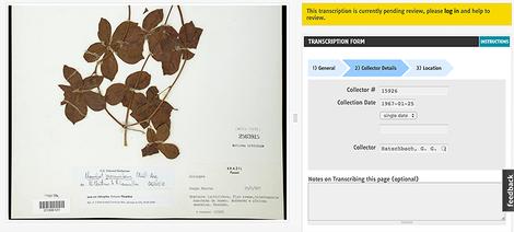 Wie die Smithsonian Institution die Schwarmintelligenz für Geschichtsforschung nutzt