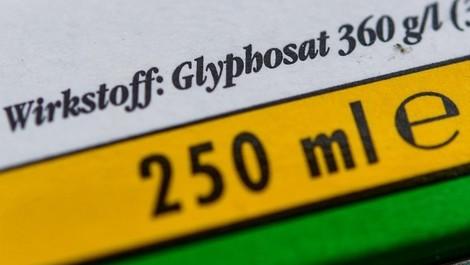 Streit um Glyphosat: Was passiert, wenn die Zulassung ausläuft? Antwort: Es wird einfach verlängert.
