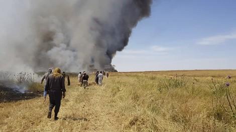 Deshalb brennen die Getreidefelder im Irak und in Syrien