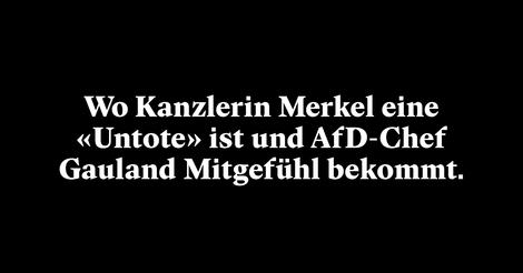 NZZ in Deutschland: Die Zeitung, die Hans-Georg Maaßen aus der Seele spricht
