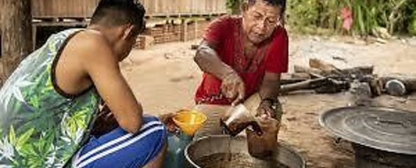 Der Hype um Ayahuasca – und seine Folgen im Amazonas-Gebiet