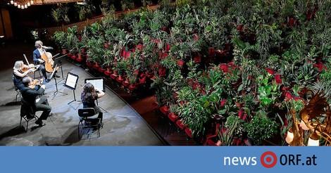 Zur Wiedereröffnung in Barcelona's Oper: Konzert für 2000 Pflanzen