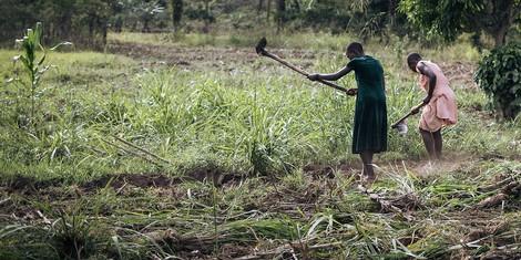 Naturschutz in Afrika –ein Erbe der Kolonialzeit?