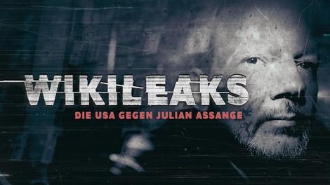 Julian Assange: Wie ein ganz schlechter Spionagefilm