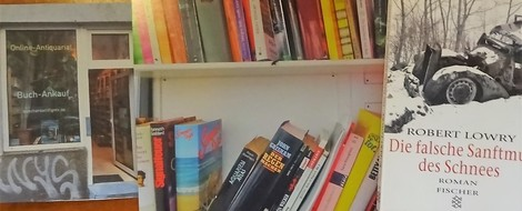Bücherbox: Debüts – Die falsche Sanftmut des Schnees